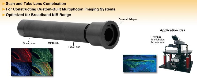 NIR Scan and Tube Lens for Multiphoton Imaging