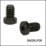 Low-Profile Channel Screws