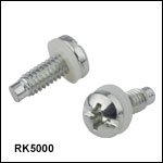 Pilot Point Pan Head Screws