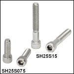 1/4in-20 Stainless Steel Cap Screws