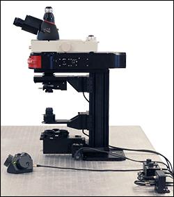 Cerna Microscope CM3001 Side View