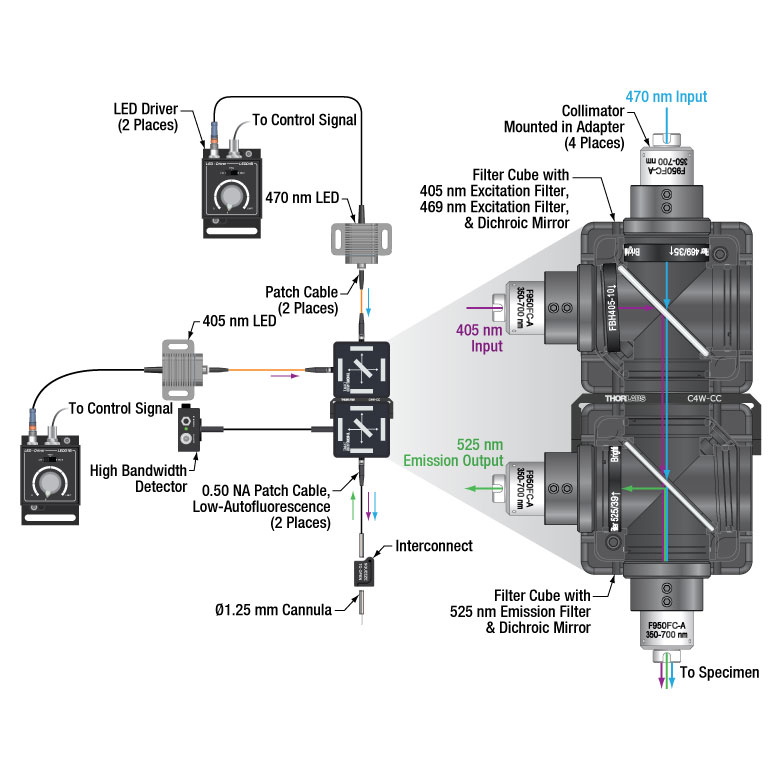 Fiber Photometry System Schematic