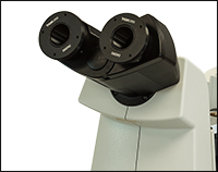 SM2N2 Adapter Attached to Trinocular Eyepieces