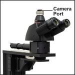 Trinoculars with Camera Port